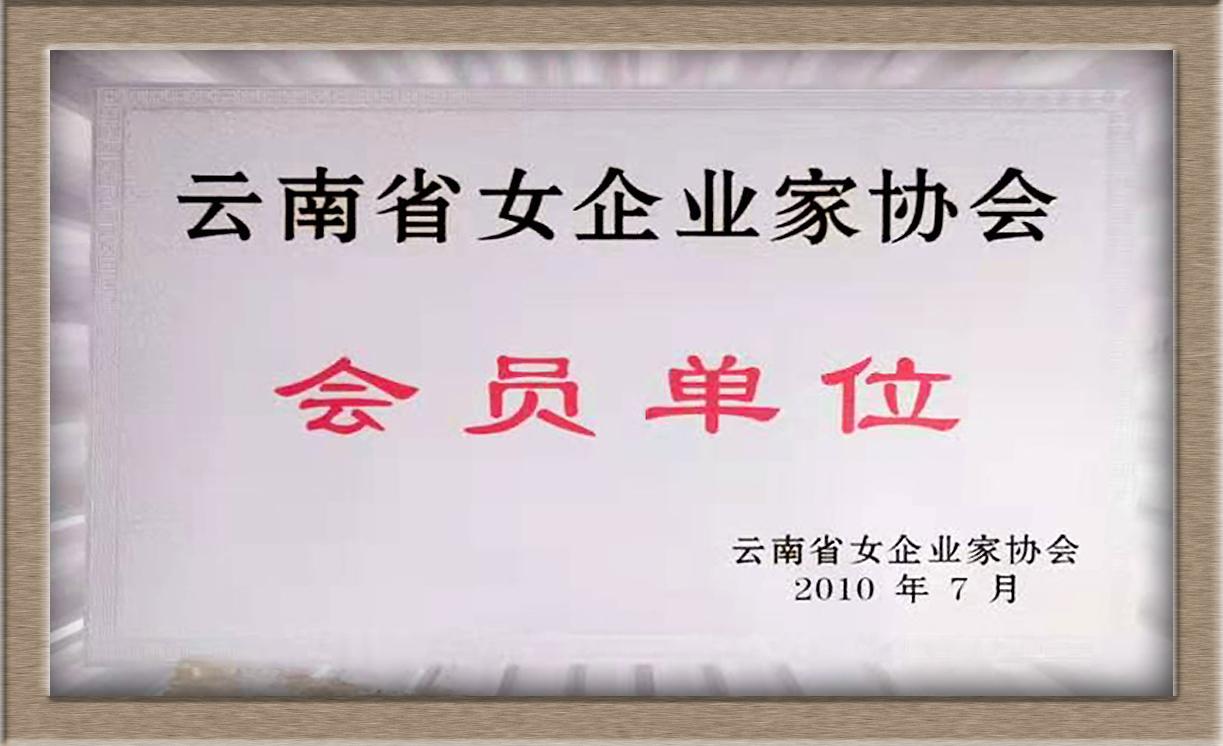 云南省女企业家协会会员单位